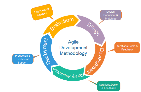 A successful software outsourcing depends on an effective software development lifecycle